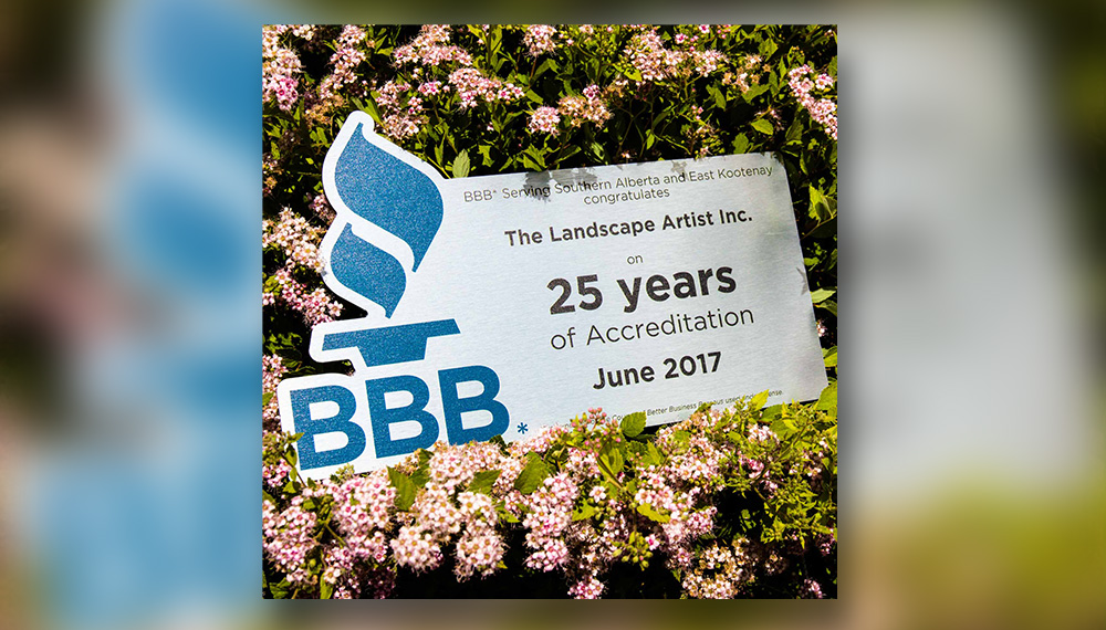 The Landscape Artist is recognised by the BBB Better Business Bureau